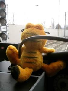 GarfieldSmiles