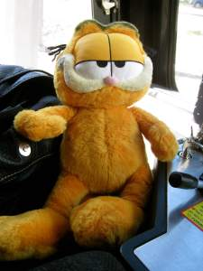 GarfieldTrainPetSmiles